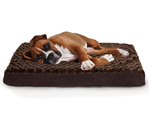 Remarkable Top 10 Most Comfortable And Best Dog Beds 2019 Top Ten Select Creativecarmelina Interior Chair Design Creativecarmelinacom