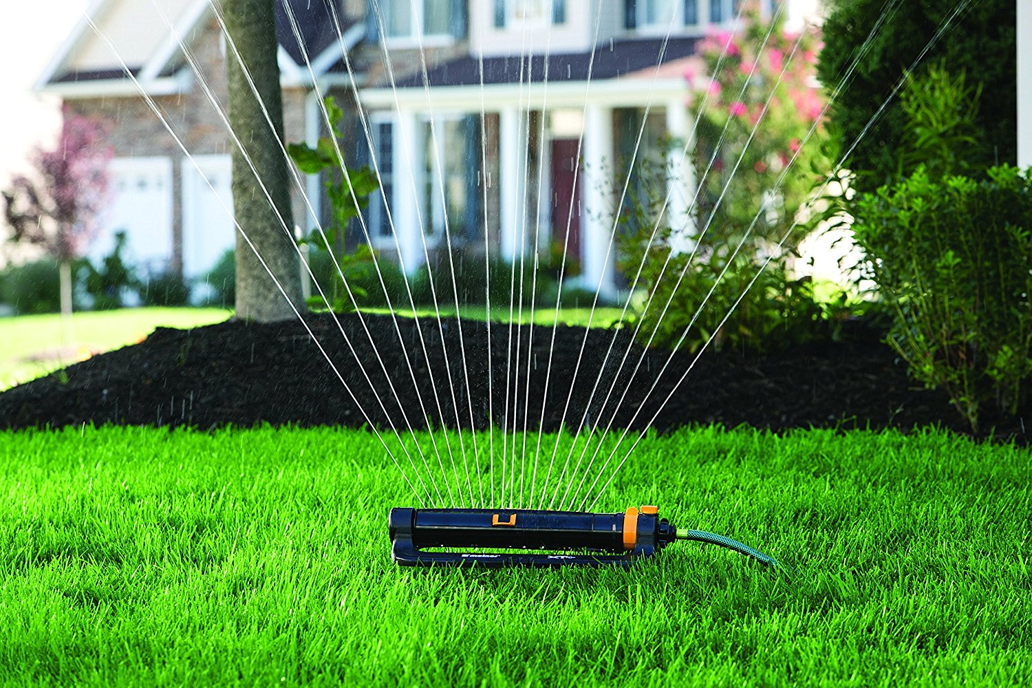 Forum on this topic: How to Buy Lawn Sprinklers, how-to-buy-lawn-sprinklers/