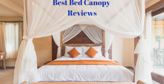 Best Bed Canopy